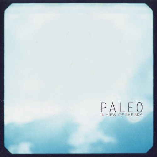 A View Of The Sky By Paleo On Vinyl Record