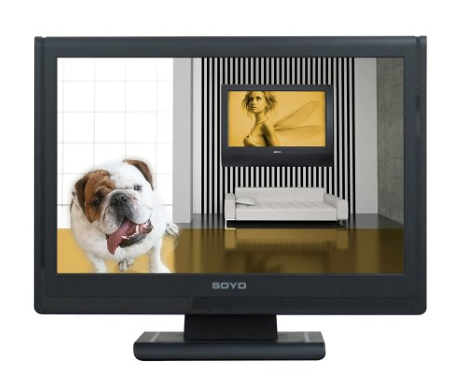 Soyo DYLM1986 19 Inch Wide TFT LCD Monitor With Speakers