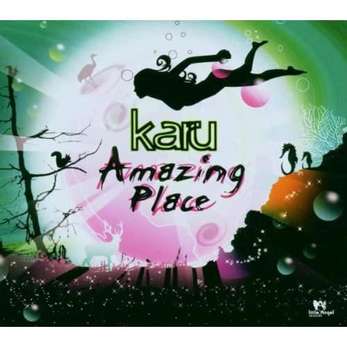 Image 0 of Amazing Place By Karu On Audio CD Dance & Electronica