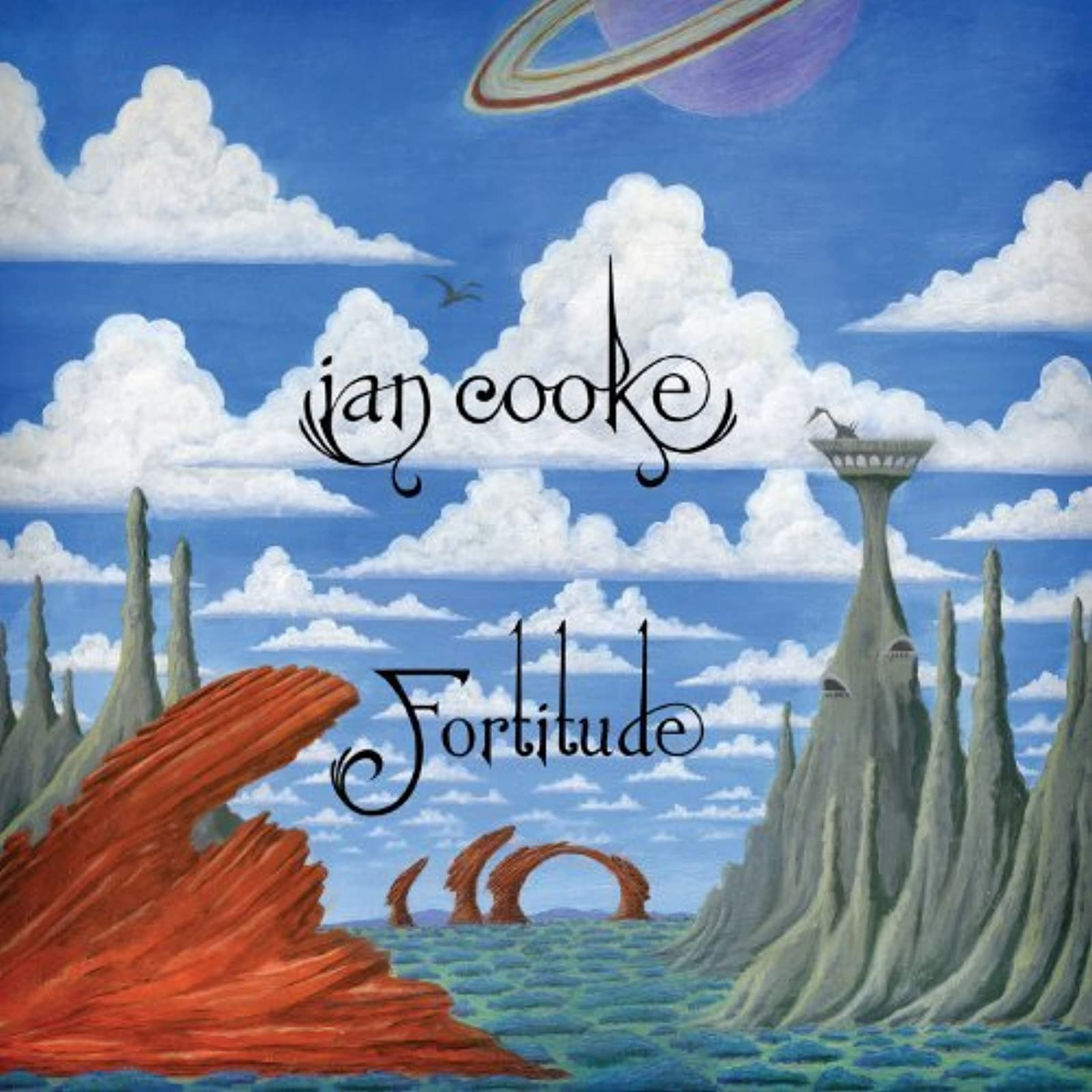 Fortitude By Ian Cooke On Vinyl LP Record